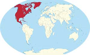 North America World Map