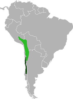 Parts of South America